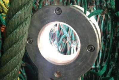 Pisces Prototype