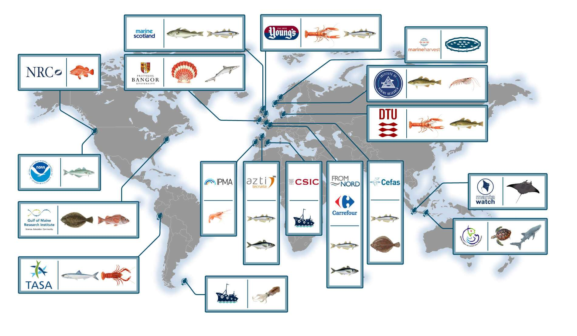 SafetyNet Technologies Is Available All Over The World