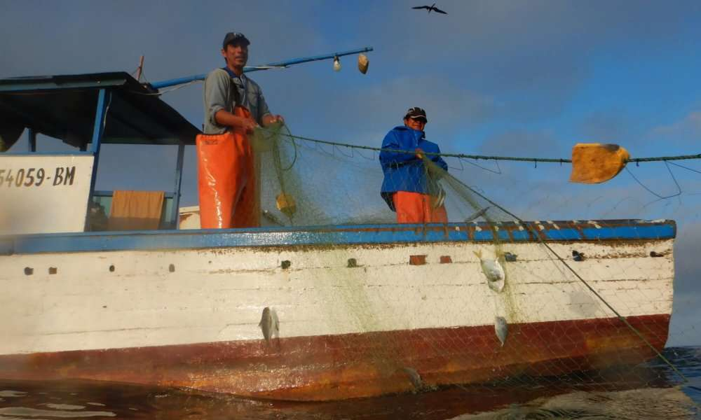How We Work With Fishing Communities: A Case Study In Peru